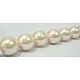 Shell Pearl Beads StrandsUK-SP10MM205-K-2