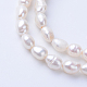 Natural Cultured Freshwater Pearl Beads StrandsUK-PEAR-S010-04-1